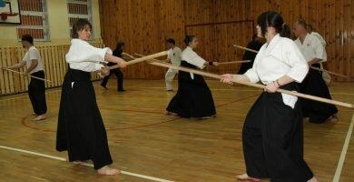 Bojutsu Arte Marcial