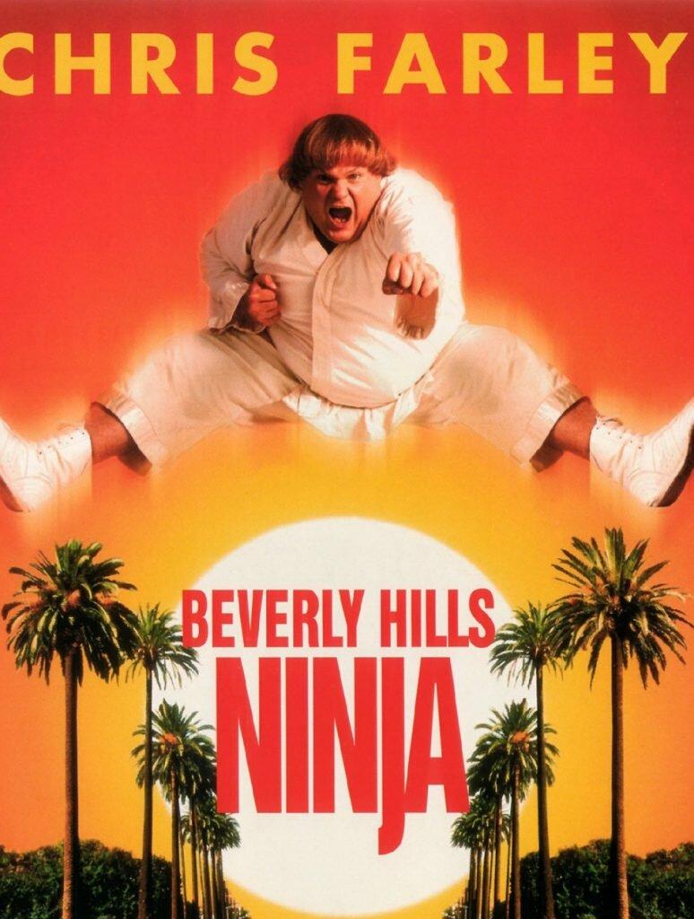 peliculas completas de ninjas, el ultimo ninja blanco, el ninja blanco pelicula completa en español