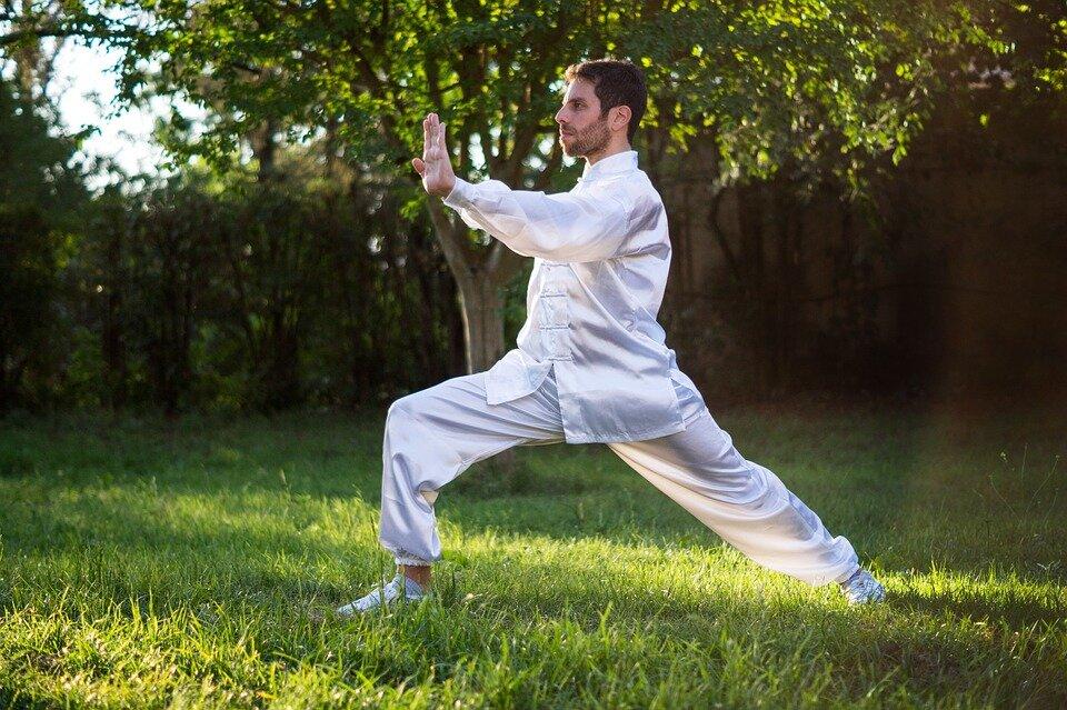 artes marciales, nombres de artes marciales del mundo