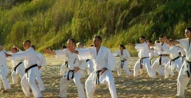 Karate, estilos tecnicas, historia y mucho mas