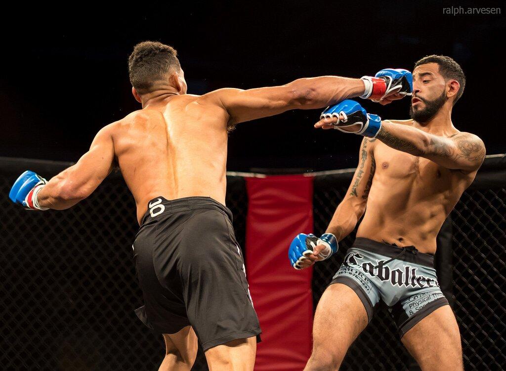 deportes de contacto, mejor arte marcial para pelea callejera, artes marciale