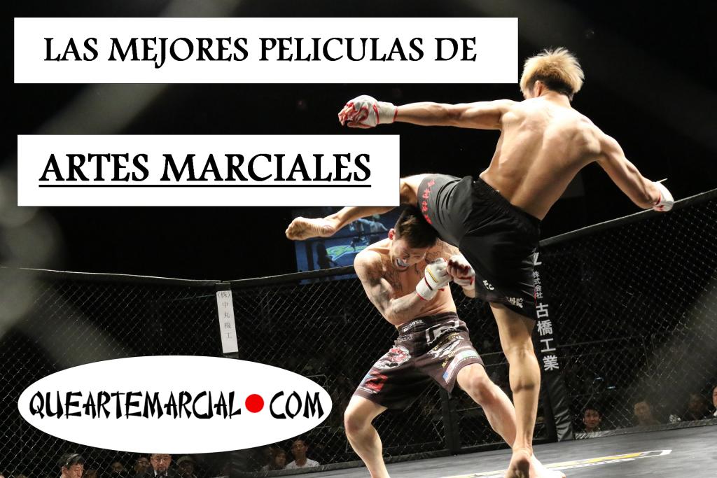 Las mejores películas de artes marciales, lista de queartemarcial.com