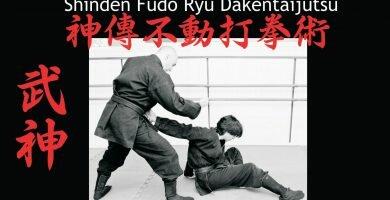 Shinden Fudo Ryu Dakentaijutsu La escuela del corazón inmutable
