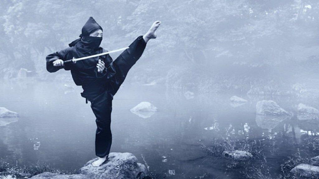Las Particularidades del Ninja, ninjas asesinos